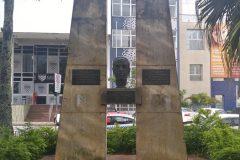 Dinho-no-Centro-de-Florianópolis-27