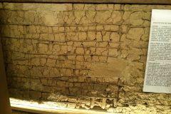Dinho-no-Museu-de-Arte-Sacra-56