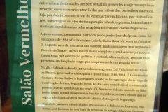 Dinho-no-Palácio-Cruz-e-Sousa-02
