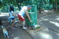 Dinho-no-Parque-Buenos-Aires-16
