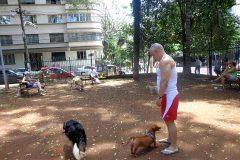 Dinho-no-Parque-Buenos-Aires-20