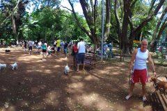 Dinho-no-Parque-Buenos-Aires-23