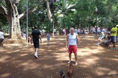 Dinho-no-Parque-Buenos-Aires-24