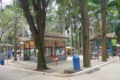 Dinho-no-Parque-da-Água-Branca-06